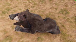 RUST - Животные теперь спят!
