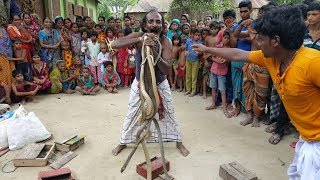 Snake Charming Show In Village | Poisonous Snake Cobra & Rat Snake Played By Snake Charmers thumbnail