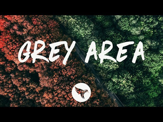 Grey - Grey Area (Lyrics) ft. Sofia Carson