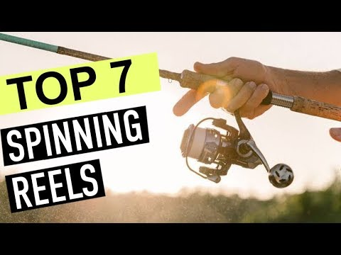 TOP 7: Best Spinning Reel 2020