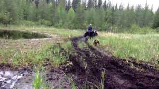 Yamaha 660 grizzly mudding in swamp