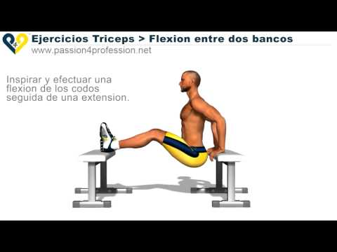 Ejercicios: Triceps Braquial - YouTube