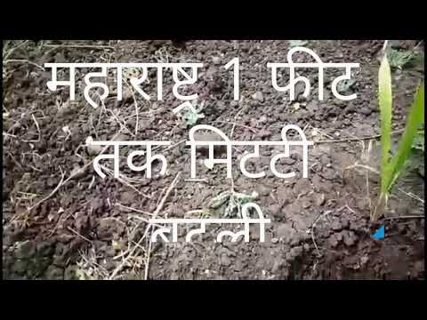 Soil Changed with waste decomposer