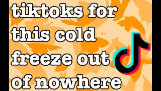 tiktoks for this cold freeze out of nowhere