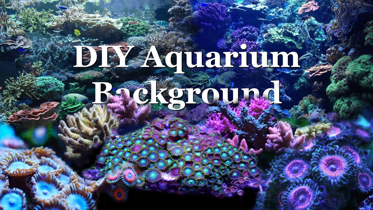 How To Diy Aquarium Background