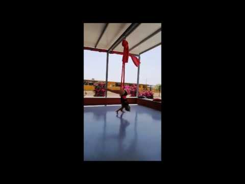 Silk Hammock Training Tricks Studio Facettenreich