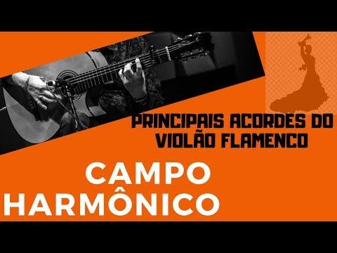 [total-flamenco]-campo-harmônico---modo-flamenco---flavio-rodrigues-/-violão-flamenco