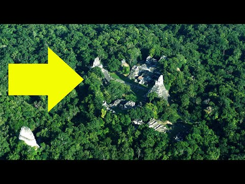 In 2018 Scientists Exploring A Guatemalan Jungle Found A Sophisticated Maya Settlement..