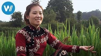 China, Braut ohne Bräutigam (360° - GEO Reportage)