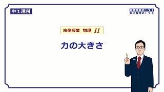 【中1 理科 物理】 力の単位ニュートン (9分)