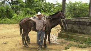 Charanga campesina -Calixto Ochoa - version original.