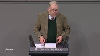 Alexander Gauland (AfD) in der Generaldebatte  am 27.11.19