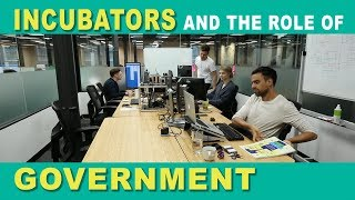Incubators and the Role of Government