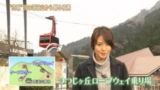 今回の「磯山さやかの旬刊!いばらき」では,磯山さやかさんが「筑波山...