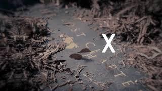 Alesana - Madeline (Official Stream Video)