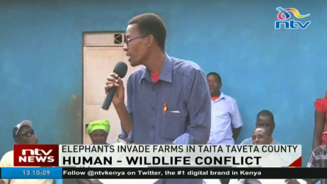 Human - Wildlife conflict; residents of Taita Taveta stage protests