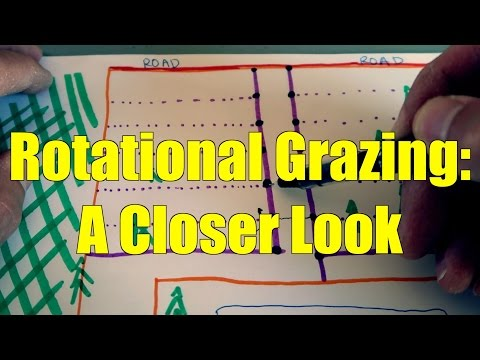 Rotational Grazing System: A Closer Look