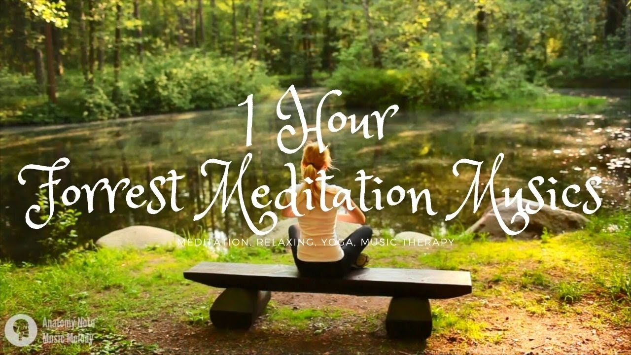 1 Hour Meditation music relax mind and body | Meditation, Relaxing, Calm, Study  | Music Therapy