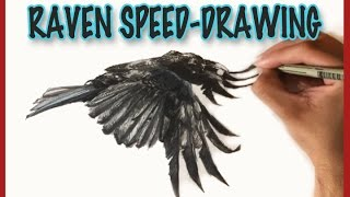 Raven in flight, Speed-Drawing, Watercolors and Ink