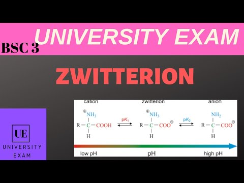 zwitterion-in-hindi-||-bsc-3rd-year-chemistry