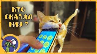 Разговариваем с котиком Рыжиком и щенком Гаффи через кошачий и собачий разговорники