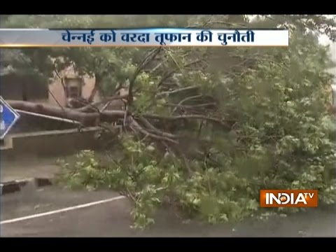 Cyclone Vardah Strikes Chennai, Heavy Rains and Massive Uprooting of Trees Reported