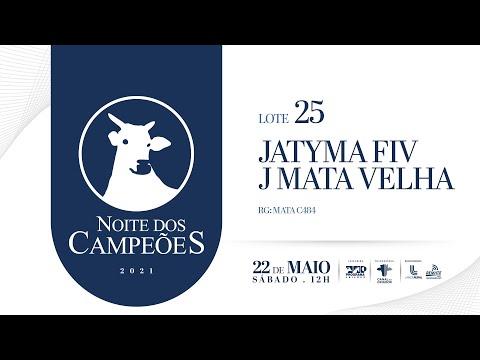 Lote 25   Jatyma FIV J  Mata Velha   MATA C484 Copy
