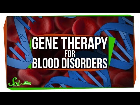 Changing DNA in a Cell With No DNA: Gene Therapy for Blood Disorders