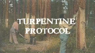 Turpentine Protocol: Candida and Parasites