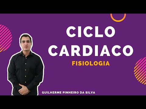 ciclo-cardíaco-(fisiologia-humana)