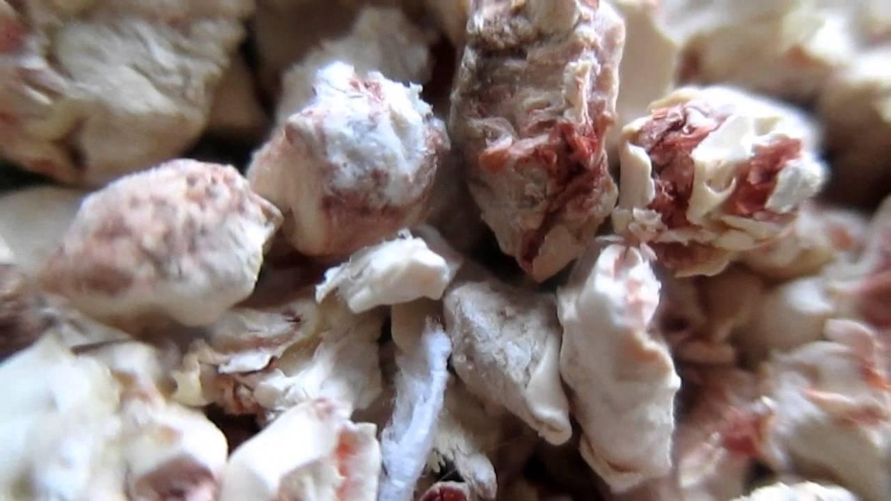 Купить. +2 бонуса. Vitaline №3 натуральные опилки для грызунов 5. 2л. Цена:. При намокании гранулы начинают испускать приятный хвойный аромат.