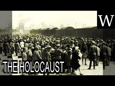 THE HOLOCAUST - WikiVidi Documentary