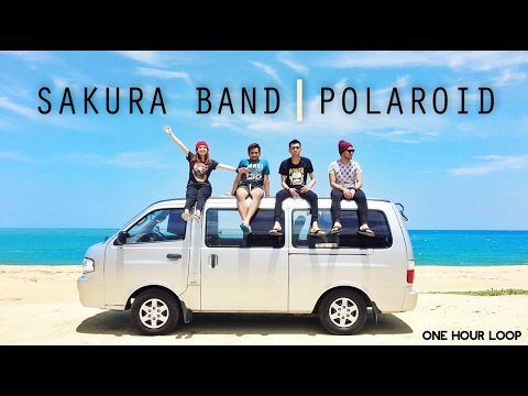 Sakura Band - Polaroid (1 HOUR LOOP)