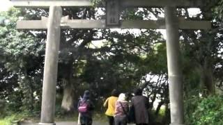 2011/12/2 中年女性五人で地元多賀山公園を散策しました。 錦江湾沿いに...