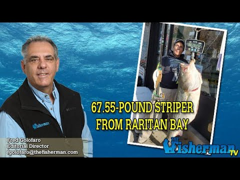 November 21, 2019 Long Island Metro Fishing Report With Fred Golofaro