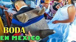 BODA MEXICANA TRADICIONAL QUE NO DEBES DEJAR DE VER