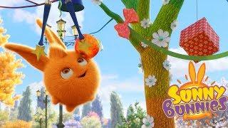 Cartoons for Children | SUNNY BUNNIES - THE MAGIC TREE | Funny Cartoons For Children