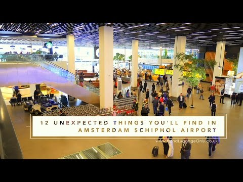 12 Unexpected Things To Do In Amsterdam Schiphol Airport!