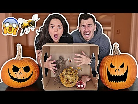 WHAT'S IN THE BOX CHALLENGE BOYFRIEND VS. GIRLFRIEND!! *SHE ACTUALLY CRIED* (HALLOWEEN EDITION)