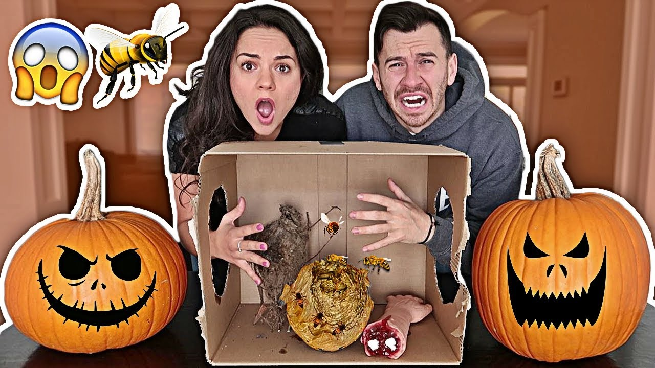 halloween whats in the box challenge boyfriend vs girlfriend she actually cried