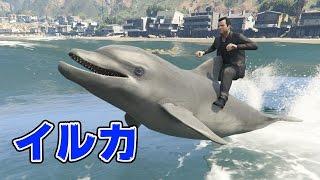 【GTA5】イルカに乗って海を泳ぐ! thumbnail