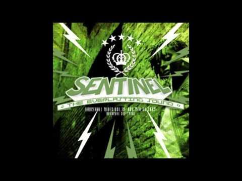 Sentinel - Dancehall Mixes Vol. 19_Nuh Tek No Chat (Dancehall Mixtape 2010 Preview)