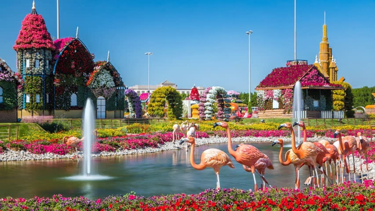 Best Time To Visit 🐪 Miracle Garden Dubai ᴴᴰ 🌴 - YouTube