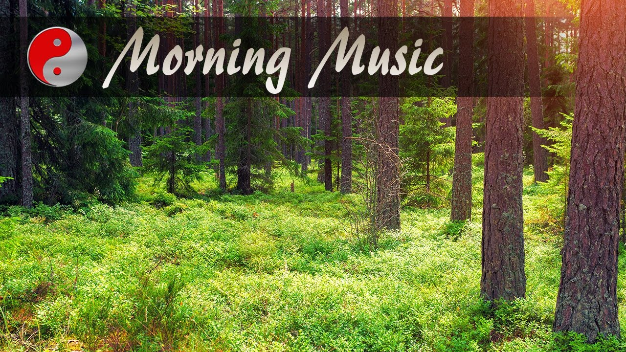 Morning Music For Positive Energy Hindi: Relaxing