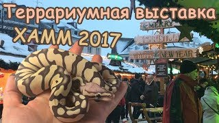 Террариумная выставка ХАММ 2017 / Змеи, лягушки, ящерицы и другие рептилии