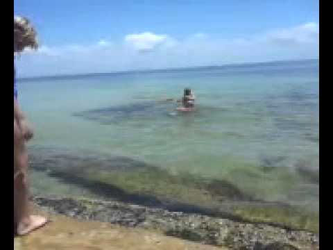 Snorkeling At Fort Desoto Beach Florida