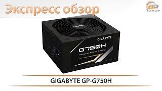 GIGABYTE GP-G750H - экспресс-обзор блока питания