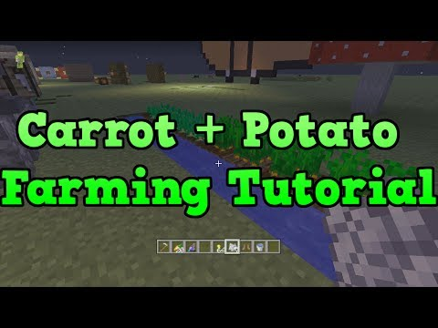 Minecraft Xbox 360 + PS3: Potato And Carrot Farming Tutorial