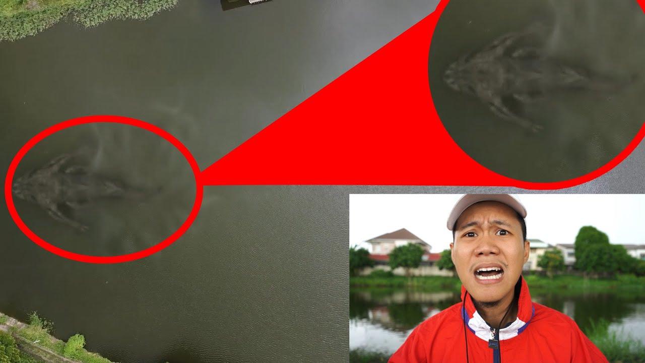 บินโดรนที่บึงน้ำใหญ่...เจอสัตว์ใหญ่ปริศนาคล้ายปลาปนงู|โดรนจับภาพEp19|