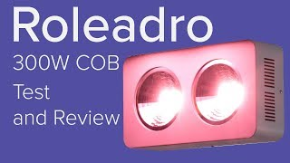 Roleadro 300w COB grow light test and review